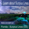 Florida - Surplus Lines (CE) (INSCE036FL6)
